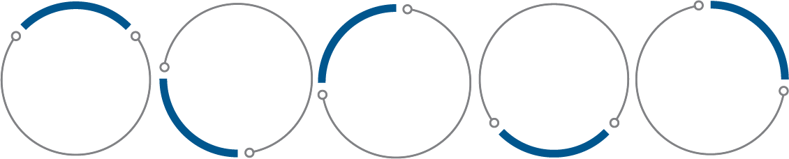 5 Services Circles Lighter Blue